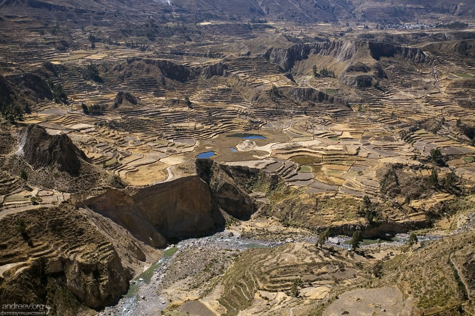 http://www.andreev.org/albums/Colca%20Canyon/images/084PE.jpg