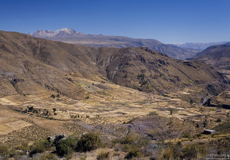 http://www.andreev.org/albums/Colca%20Canyon/images/089PE.jpg