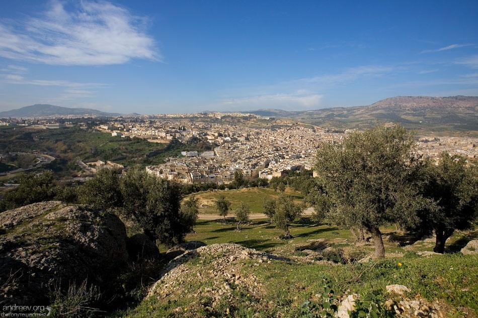 старая Медина, основанный в 8-м веке