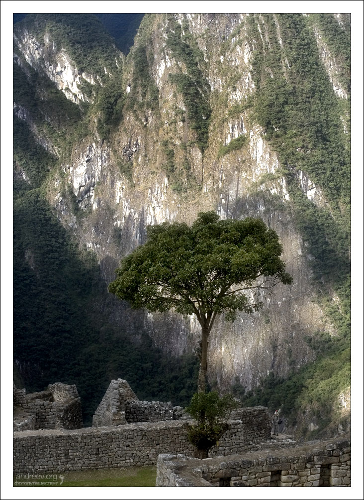 http://www.andreev.org/albums/Machu%20Picchu/images/355PE.jpg