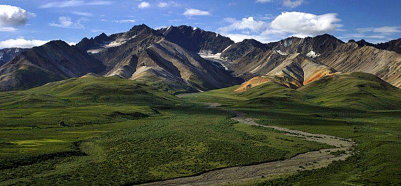 """Аляска: национальный парк """"Денали"""""""