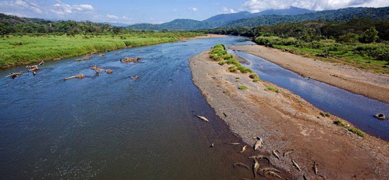 Зеленые холмы Коста-Рики. Фоторассказ. Части 7-8