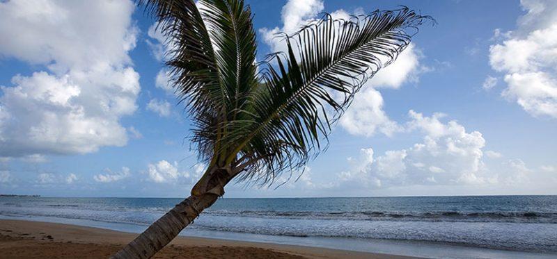 Пуэрто-Рико: записки с американского острова. Часть 2