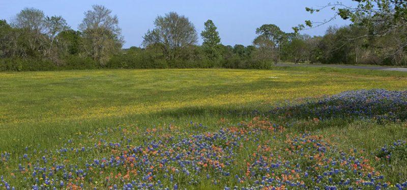 Весенний Техас