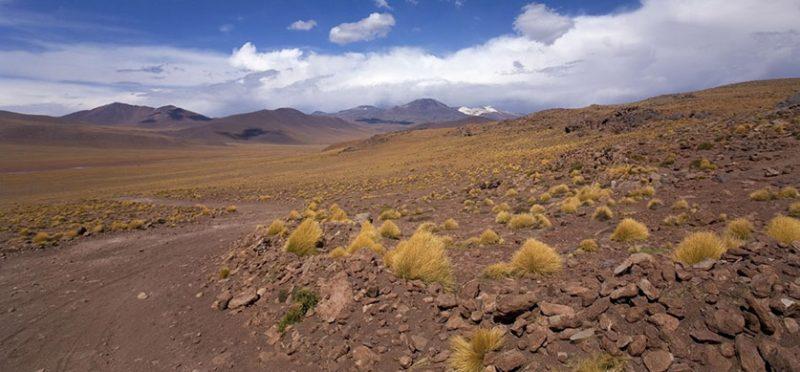 Чили: путешествие по краешку Земли. Часть 12