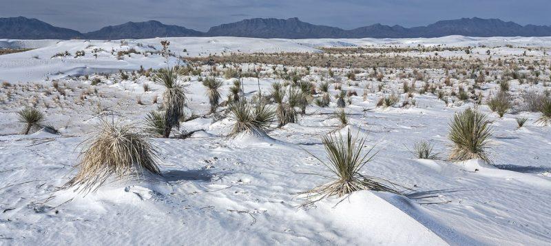 США: Нью-Мексико – Колорадо на RV: Белые пески.