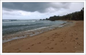 Следы на пляже Bathsheba.