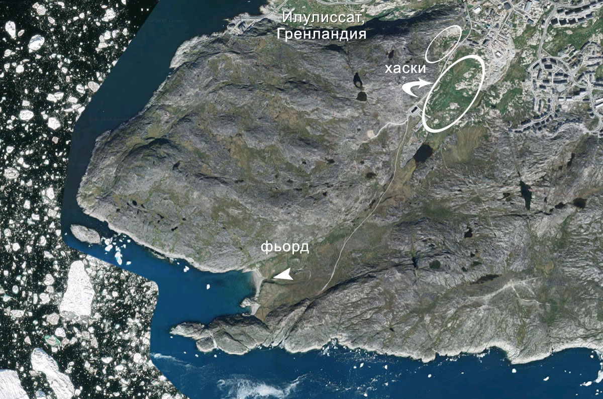 Гренландия: в гостях у [сказки] хаски