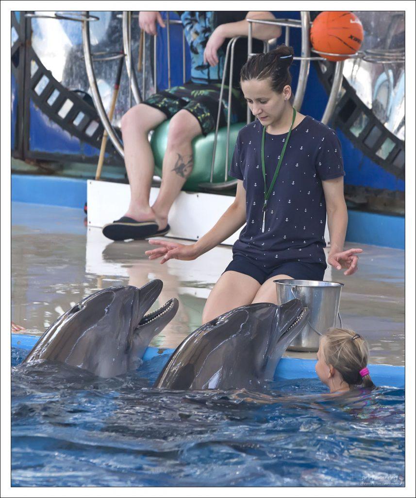 Сочи: дельфинарий. Два.