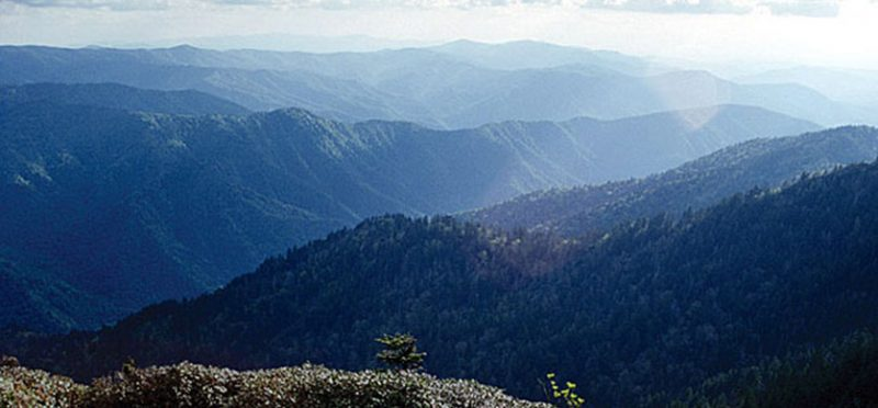 Национальный парк Great Smoky Mountains, Теннеси