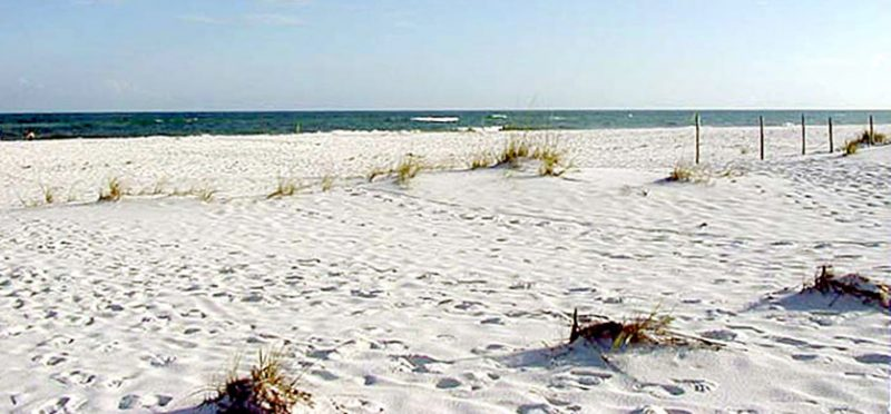 Флорида: фотографии