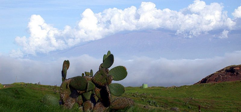 Большой остров, Гавайи: фотографии