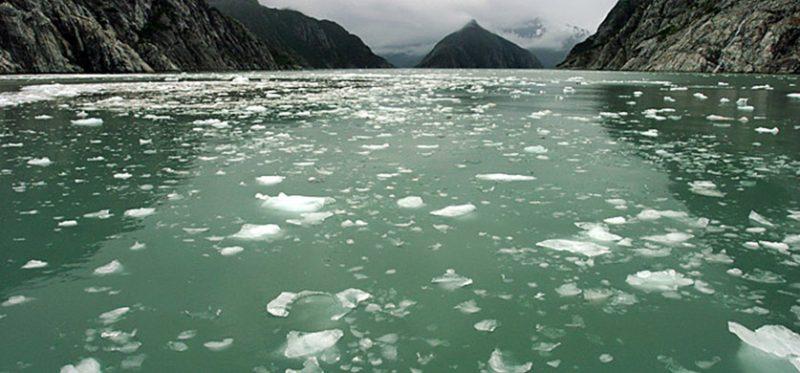 Аляска: фотографии национального парка Kenai Fjords