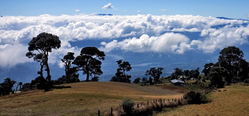 Зеленые холмы Коста-Рики. Фоторассказ. Окончание