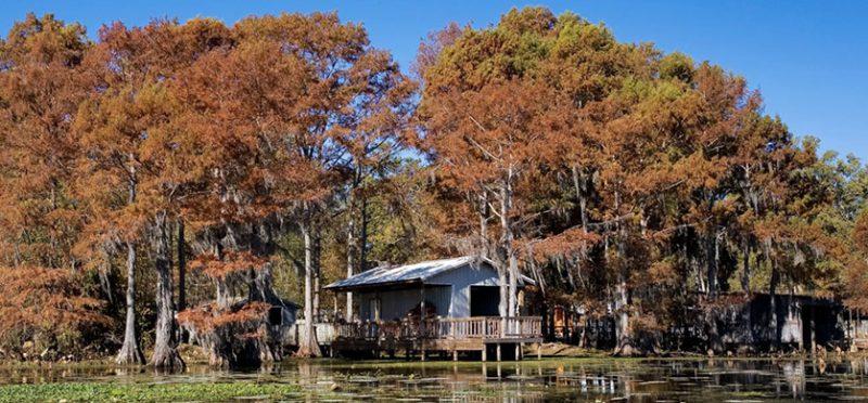 Техас: прогулка по озеру Каддо