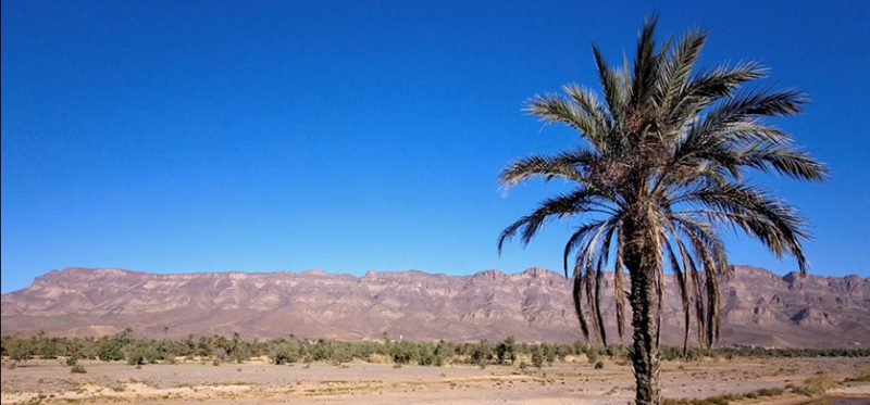 Марокко: фотографии юга страны