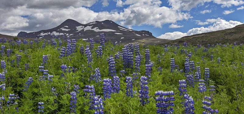 Исландия: негламурный Глимур. Фоторепортаж