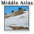 Middle Atlas