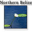 North_of_Belize