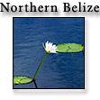 North_of_Belize