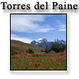 Нац. парк Torres del Paine